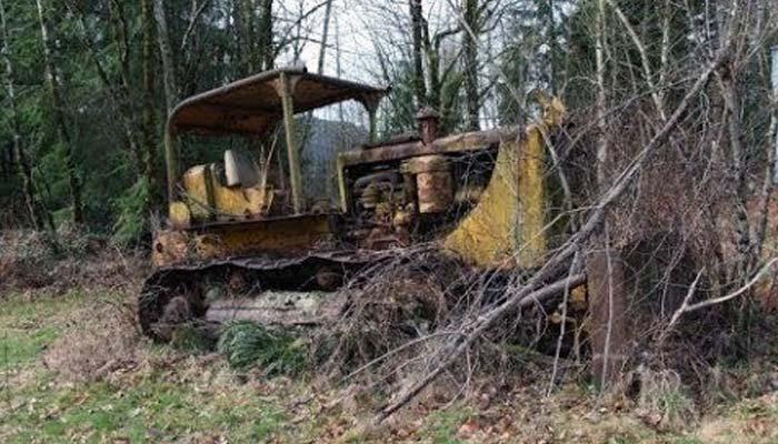 Старый бульдозер в лесу